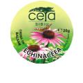 Echinacea Ointment BioShopRomania