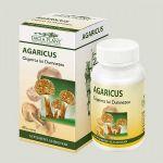 Agaricus BioShopRomania.com