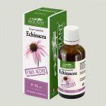 Echinacea tincture without alcohol BioShopRomania