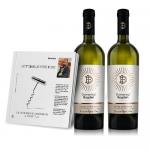 Connaisseur fara ifose, Tot ce ai vrea sa stii despre vin, Si ceva in plus de Cezar Ioan, Editura GastroArt