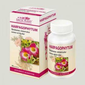 Harpagophytum BioShopRomania